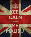 KEEP CALM AND BLAME THE MALIBU  - Personalised Poster small