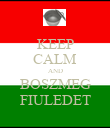 KEEP CALM AND BOSZMEG FIULEDET - Personalised Poster large