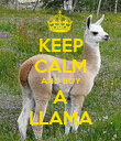 KEEP CALM AND BUY A LLAMA - Personalised Poster large