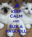 KEEP CALM AND BUY A RAGDOLL - Personalised Poster large