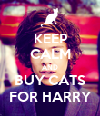 KEEP CALM AND BUY CATS FOR HARRY - Personalised Poster large