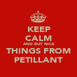 KEEP CALM AND BUY NICE THINGS FROM PETILLANT - Personalised Poster large