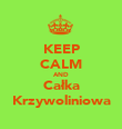 KEEP CALM AND Całka Krzywoliniowa - Personalised Poster large