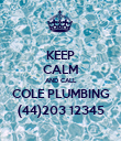 KEEP CALM AND CALL COLE PLUMBING (44)203 12345 - Personalised Poster large