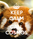 KEEP CALM AND CALL COSMOS - Personalised Poster large