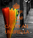 KEEP CALM AND CARRY AN  UMBRELLA - Personalised Poster large