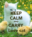 KEEP CALM AND CARRY  Love cat - Personalised Poster small