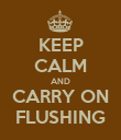 KEEP CALM AND CARRY ON FLUSHING - Personalised Poster large