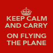 KEEP CALM AND CARRY  ON FLYING THE PLANE - Personalised Poster large