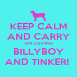 KEEP CALM AND CARRY ON LOVING BILLYBOY AND TINKER!  - Personalised Poster large