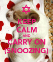 KEEP CALM AND CARRY ON (SNOOZING) - Personalised Poster large
