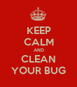 KEEP CALM AND CLEAN YOUR BUG - Personalised Poster large