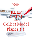 KEEP CALM AND Collect Model Planes!!!!! - Personalised Poster large