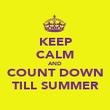 KEEP CALM AND COUNT DOWN TILL SUMMER - Personalised Poster large