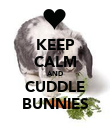 KEEP CALM AND CUDDLE BUNNIES - Personalised Poster large