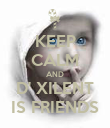 KEEP CALM AND D' XILENT IS FRIENDS - Personalised Poster large