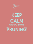 KEEP CALM AND DO SOME 'PRUNING'  - Personalised Poster large