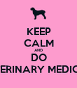 KEEP CALM AND DO VETERINARY MEDICINE - Personalised Poster large