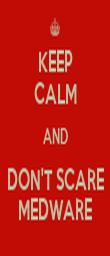 KEEP CALM AND DON'T SCARE MEDWARE - Personalised Poster large
