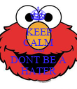 KEEP CALM AND DONT BE A HATER - Personalised Poster large