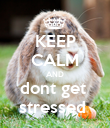 KEEP CALM AND dont get  stressed  - Personalised Poster large