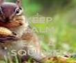 KEEP CALM AND EAT A SQUIRREL - Personalised Poster large