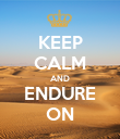 KEEP CALM AND ENDURE ON - Personalised Poster large