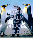 KEEP CALM AND ENJOY THE DAY - Personalised Poster large