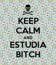 KEEP CALM AND ESTUDIA BITCH - Personalised Poster large