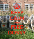 KEEP CALM AND FEED DOSSY - Personalised Poster large