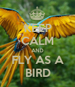 KEEP CALM AND FLY AS A BIRD - Personalised Poster large