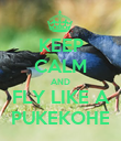 KEEP CALM AND FLY LIKE A PUKEKOHE - Personalised Poster large