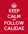 KEEP CALM AND FOLLOW CALIDAE - Personalised Poster large