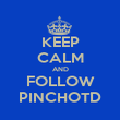 KEEP CALM AND FOLLOW PINCHOTD - Personalised Poster large