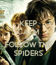 KEEP CALM AND FOLLOW THE SPIDERS - Personalised Poster large