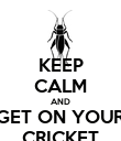 KEEP CALM AND GET ON YOUR CRICKET - Personalised Poster large