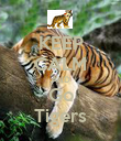 KEEP CALM AND Go Tigers - Personalised Poster large