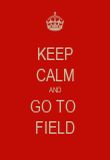 KEEP CALM AND GO TO  FIELD - Personalised Poster large