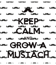 KEEP CALM AND GROW A MUSTACH - Personalised Poster large