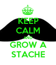 KEEP CALM AND GROW A STACHE - Personalised Poster large