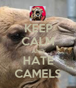 KEEP CALM AND HATE CAMELS - Personalised Poster large