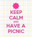 KEEP CALM AND HAVE A PICNIC - Personalised Poster large
