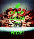KEEP CALM AND  HIDE! - Personalised Poster large