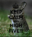 KEEP CALM AND HIGH FIVE!!! - Personalised Poster large