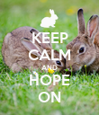 KEEP CALM AND HOPE ON - Personalised Poster large