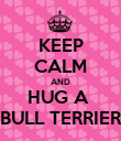 KEEP CALM AND HUG A  BULL TERRIER - Personalised Poster large