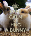 KEEP CALM AND HUG A BUNNY - Personalised Poster large