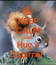 KEEP CALM AND Hug a Squirrel  - Personalised Poster large