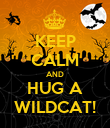 KEEP CALM AND HUG A WILDCAT! - Personalised Poster large