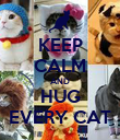 KEEP CALM AND HUG EVERY CAT - Personalised Poster small